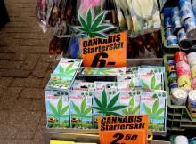 kids_marijuana
