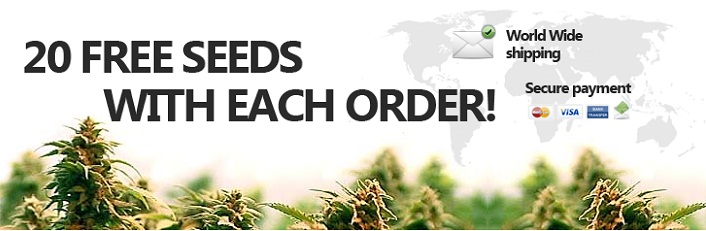 freeseedswithorders